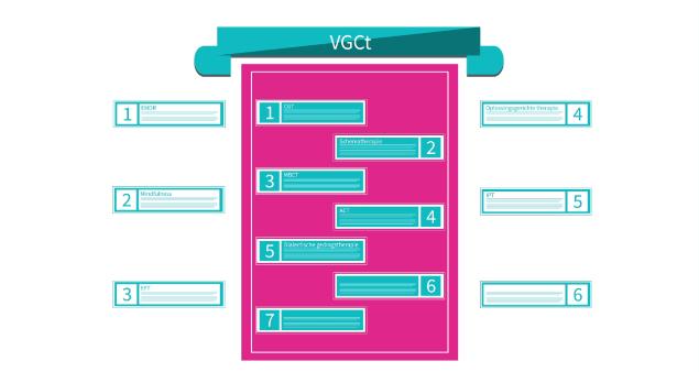 VGCt - Beleidsplan